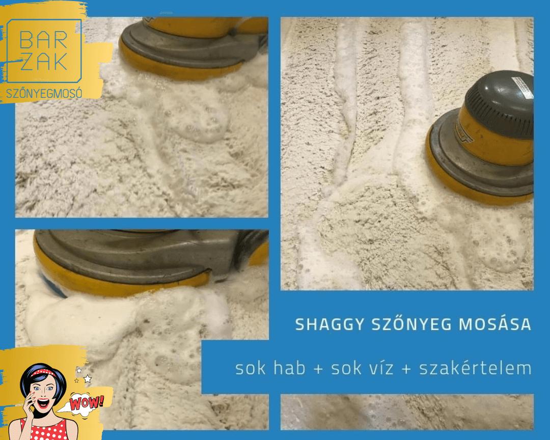 Shaggy szőnyeg mosásához szükség van sok habra, vízre és a BarZak Vibrációs Szőnyegmosás módszerére.